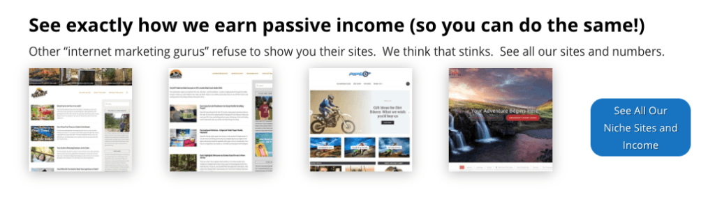 How to earn passive income - Project 24