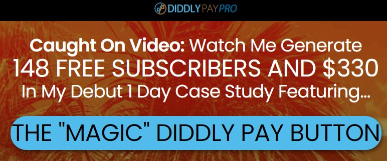 What is Diddly pay about