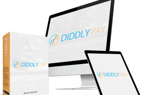 What is Diddly Pay about? Diddly Pay Pro review.