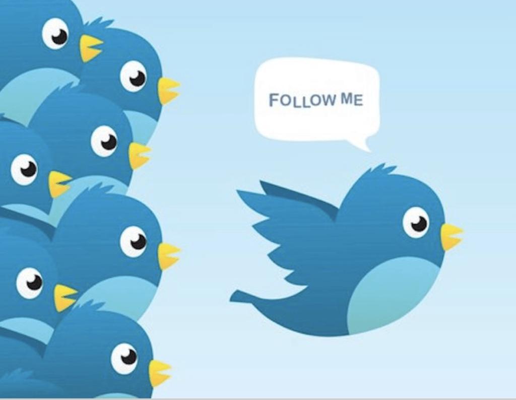tweet each day